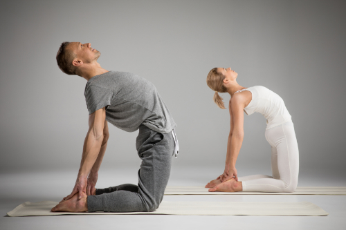 SPINE YOGA IN ENGLISH